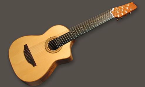 Dream Harp Guitar