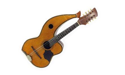 Harp Guitar Goodwill