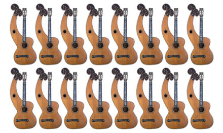 Dyer 8 x 2: Cataloging the Most Coveted of Harp Guitars