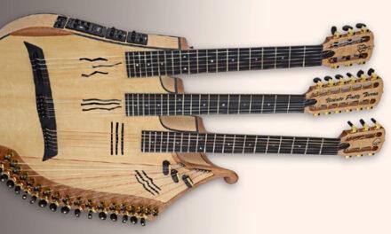 Calling All Harp Guitar Builders