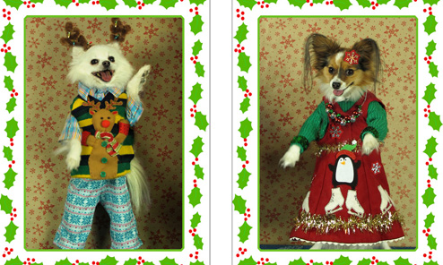 Merry Christmas 2014 from Gregg & family