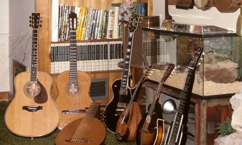 Harp Guitar Working Vacation: Epilogue