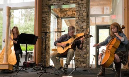 Harp Guitar Gathering 13: Sunday Workshops, Recital, Party!