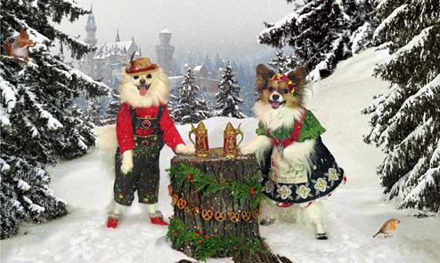 A 2017 Merry Christmas!