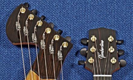 U Got 2 B Sharp: Adding Sharping Levers to a Timberline Harp Guitar